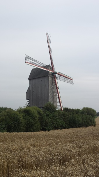 Molen in Frans-Vlaanderen (Frankrijk) - Windmill in French Flanders (France) - Moulin à Flandre Française ©YRH2015