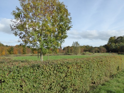 Hoornwerkpark ©YRH2015