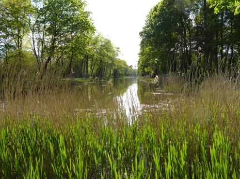 Provinciaal Domein Palingbeek - Provincial Domain Palingbeek - Domain provinciale Palingbeek ©YRH2016